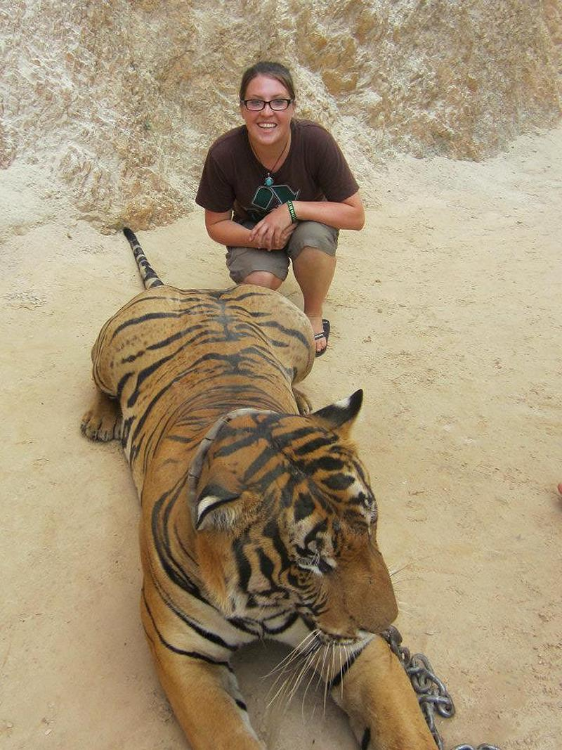 Tiger temple - Thailand