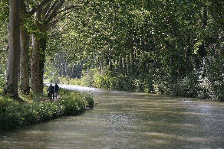 Cyclists along the Canal du Midi