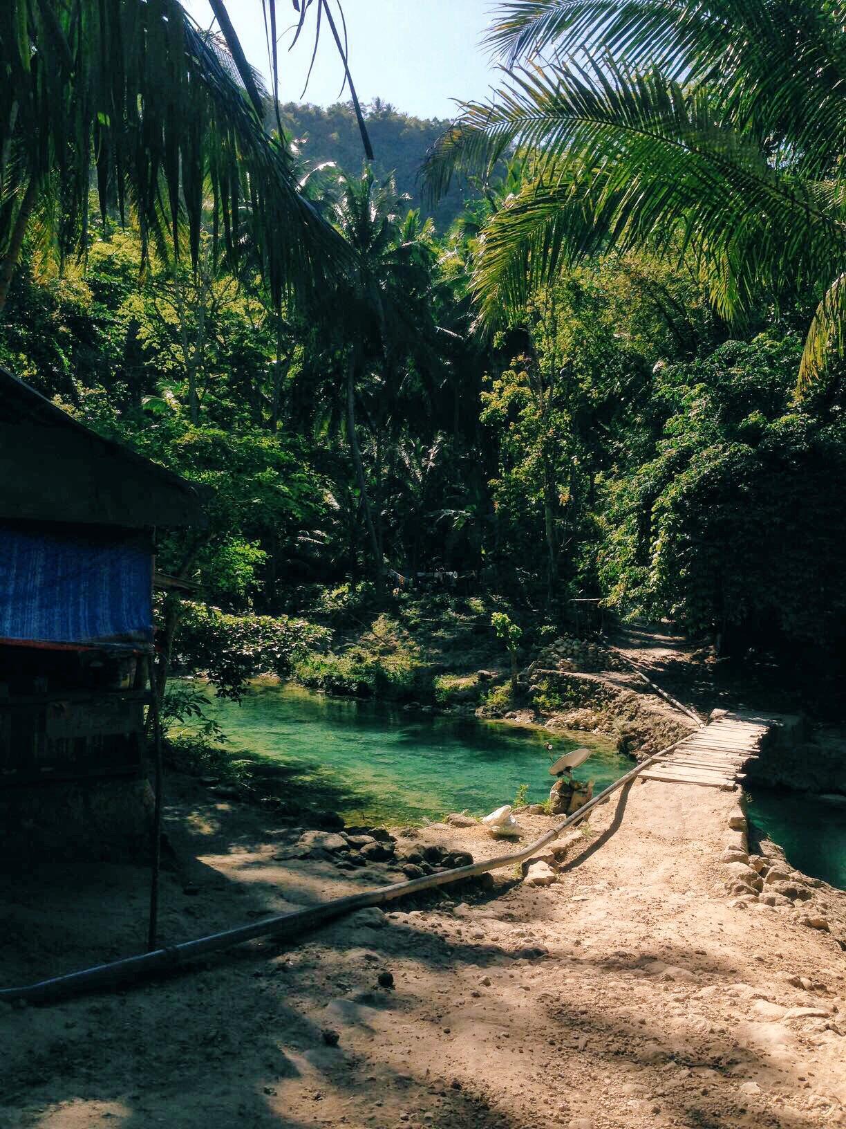 Path to Kawasan Falls