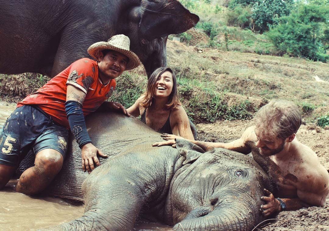 After feeding the elephants tons (literally) of bananas, we got to give them a mud spa!