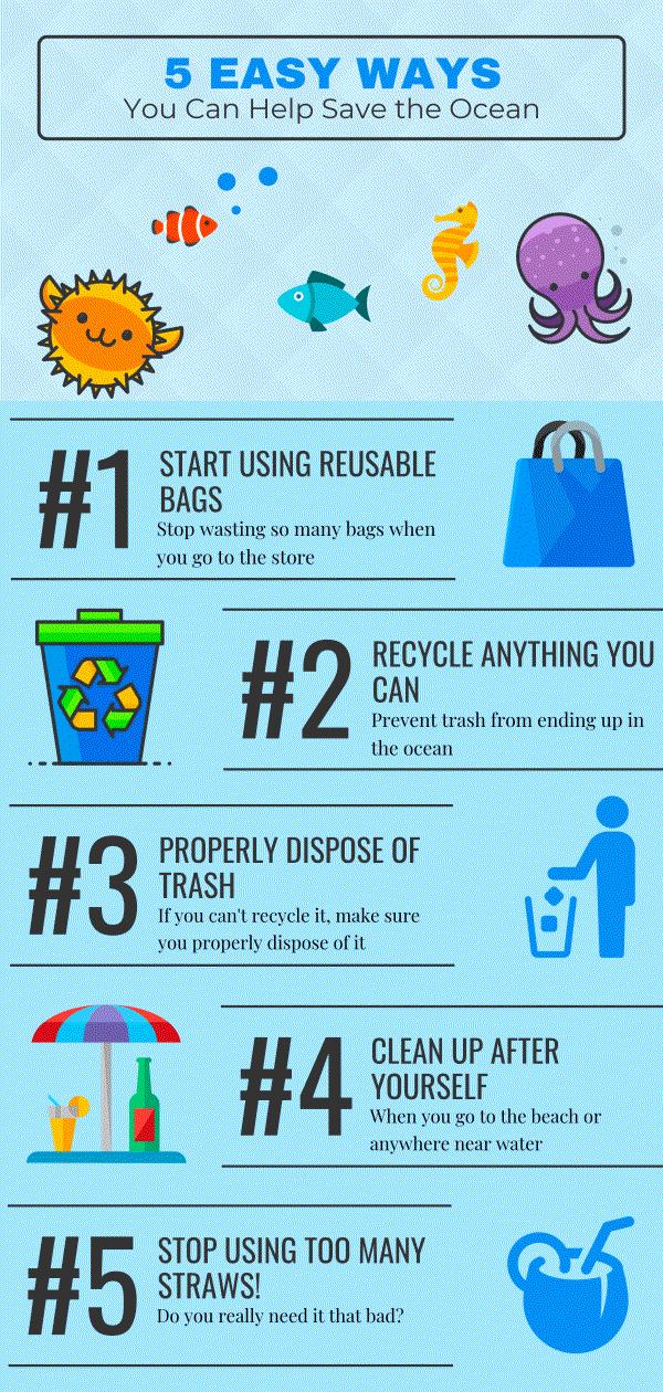 destin-infographic