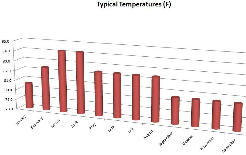 Average temperatures by month in the Maldives