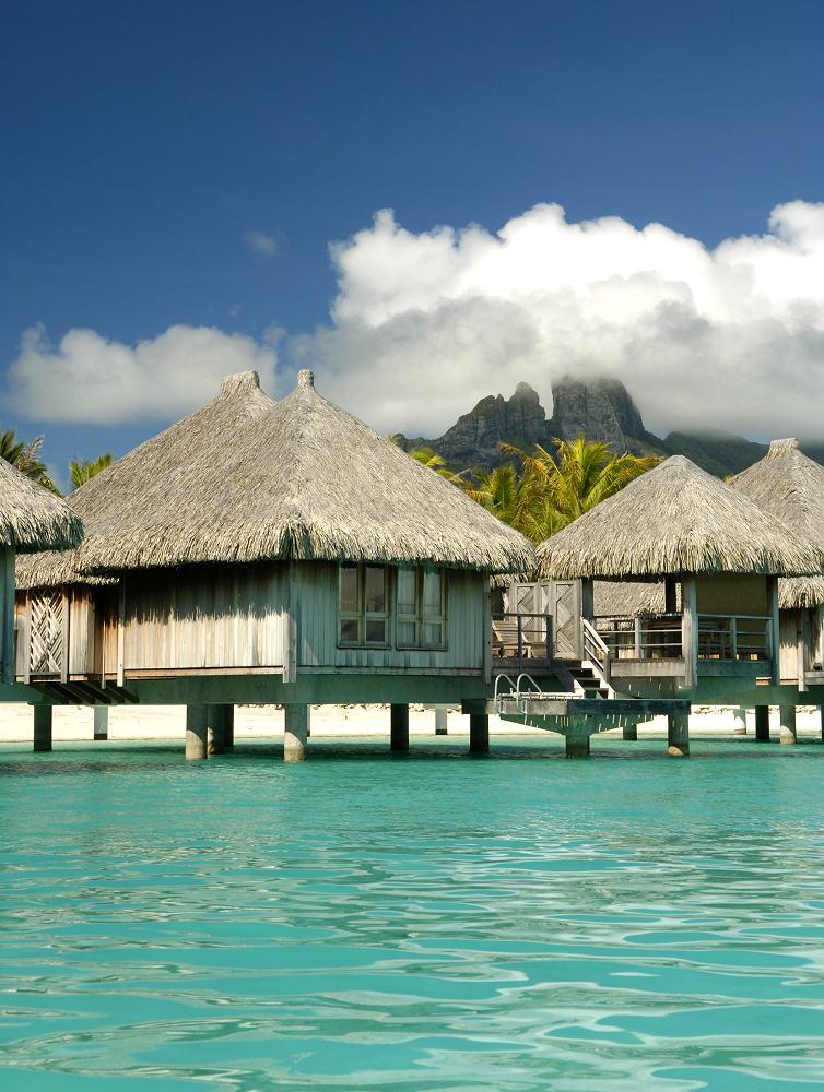 Image Result For All Inclusive Resorts Tahiti All Inclusive Resorts All Inclusive Resorts In Bora Bora