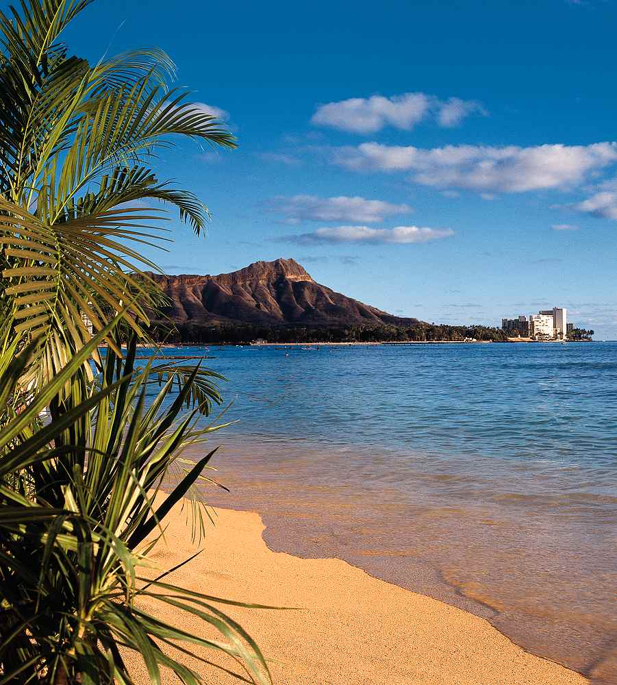 Sheraton Waikiki Oahu Reviews Pictures Virtual Tours Videos - Sheraton hawaii