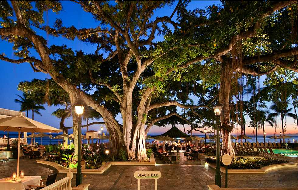 The Banyan Courtyard - Moana Surfrider.