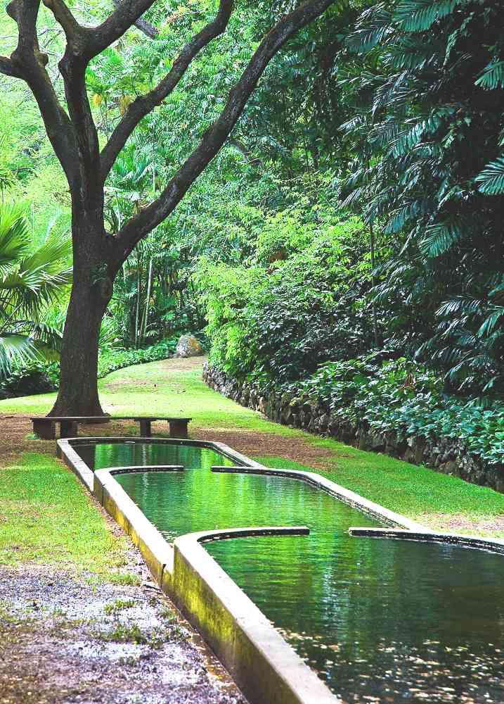 Mcbryde Garden Kauai Reviews Pictures Map Visual Itineraries