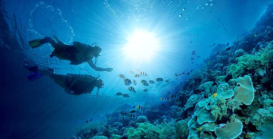 Scuba Diving Is Included From Photo Gallery For Sandals