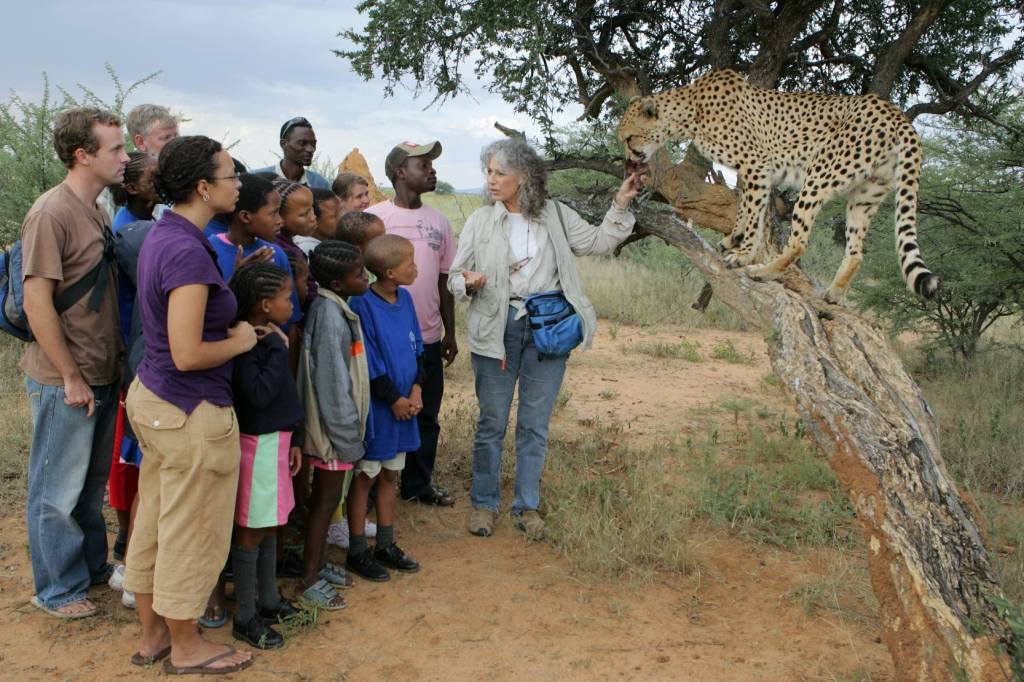 Overview - Cheetah Conservation Fund. Copyright Cheetah Conservation Fund.