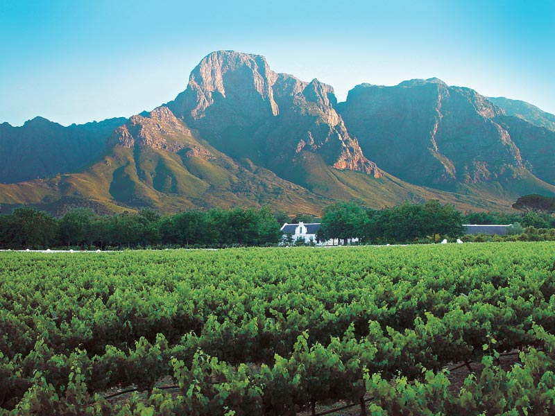 Overview - Cape Winelands. Copyright 34 South Tours.