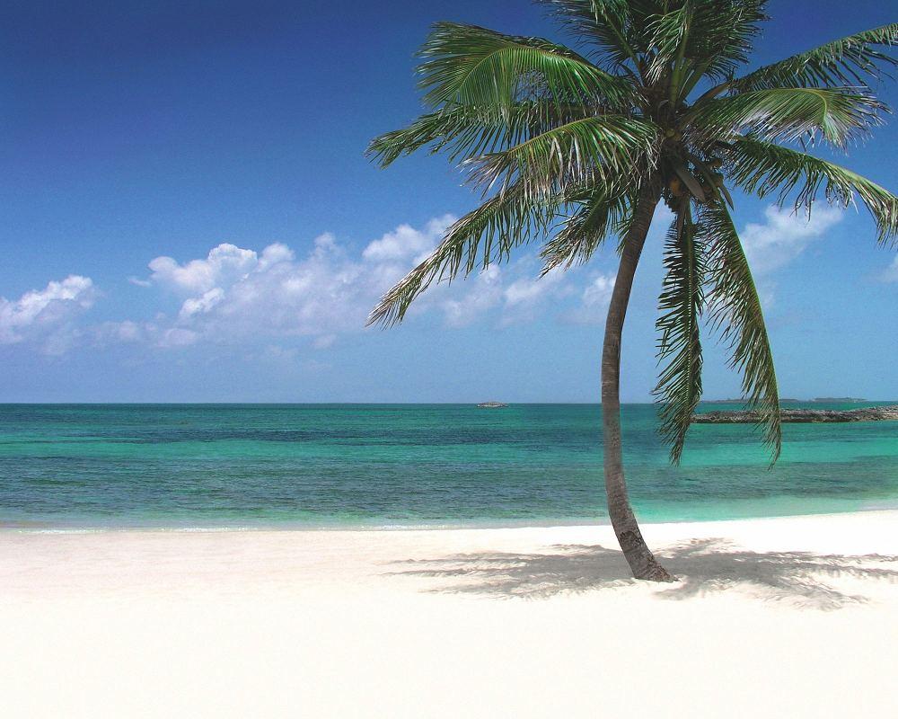 Atlantis Paradise Island Harborside Resort Bahamas