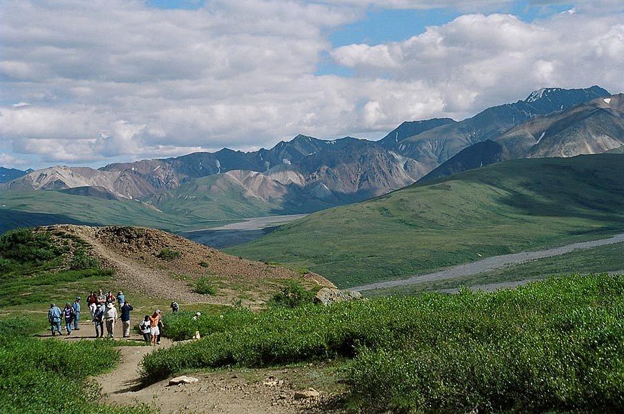 Denali River Cabins, Denali   Reviews, Pictures, Videos, Map | Visual  Itineraries