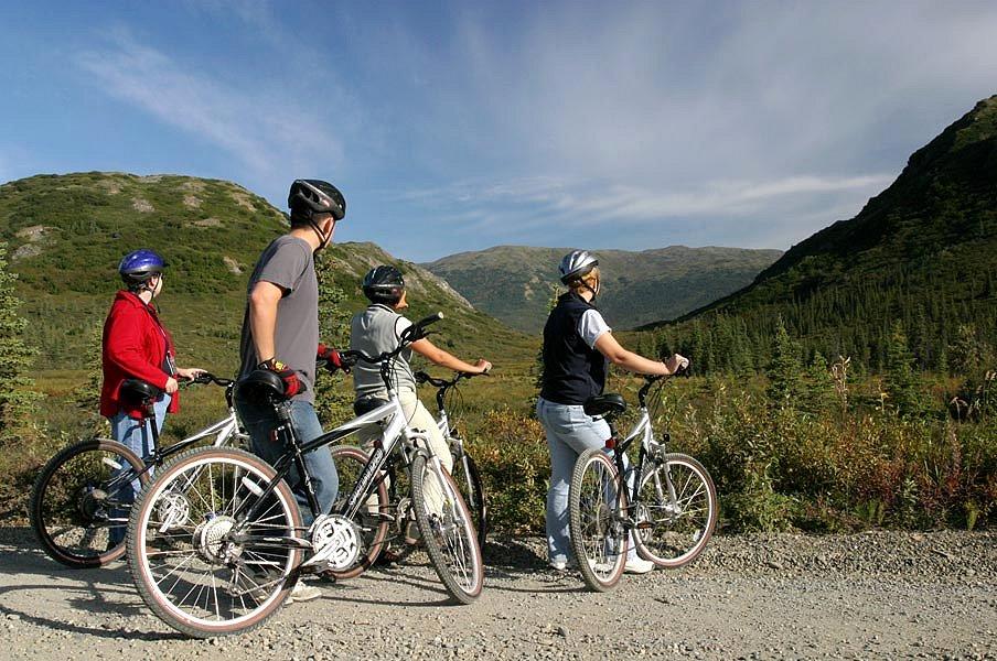 Superieur Denali River Cabins, Denali   Reviews, Pictures, Videos, Map | Visual  Itineraries