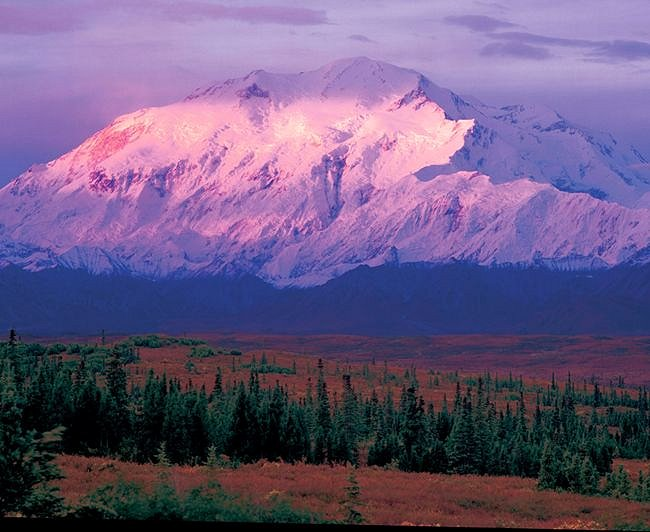 National Park Tour - Tundra Wilderness Tours. Copyright Tundra Wilderness Tours.