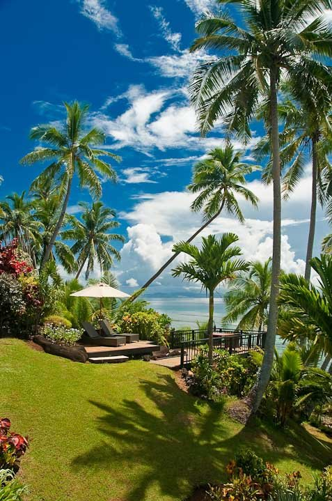 Location - Taveuni Palms.