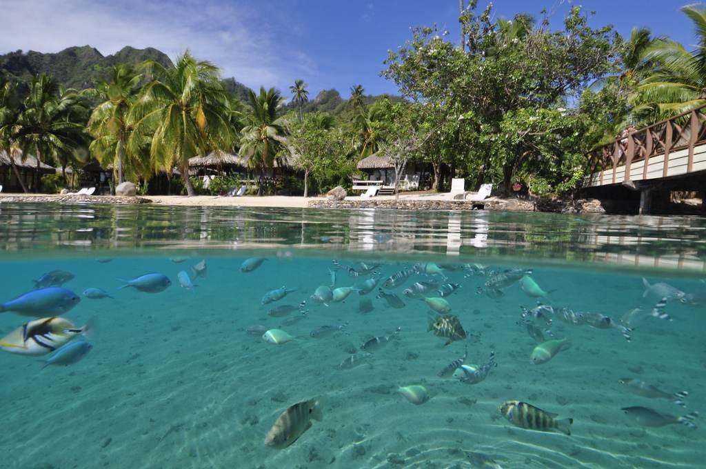 All Inclusive Beach Resorts New Zealand