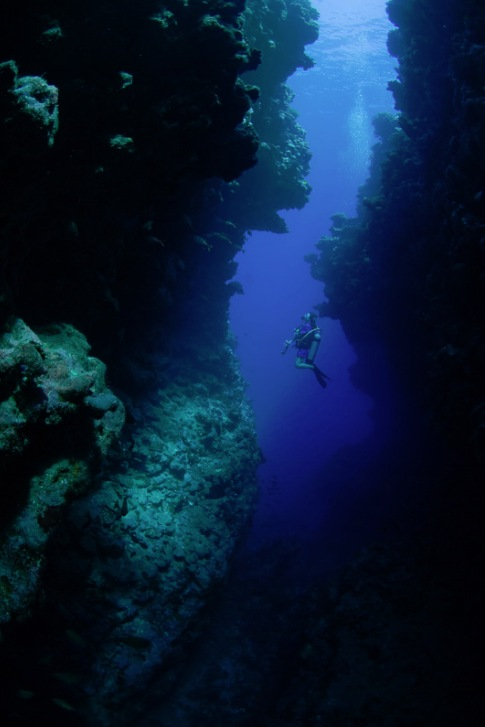 descriptive essay scuba diving Get help on 【 scuba diving and hobbies essay 】 on graduateway ✅ huge assortment of free essays & assignments ✅ the best writers everybody loves holidays because during our holidays we can relax and have fun - scuba diving and hobbies essay introduction.