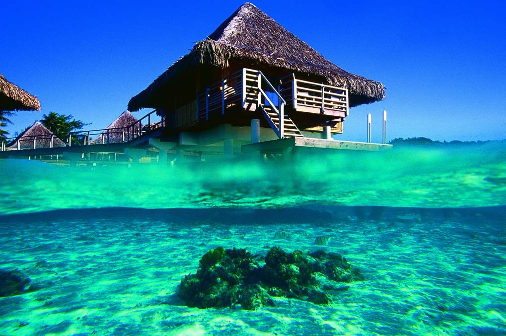 Image Result For Tahiti All Inclusive Resort