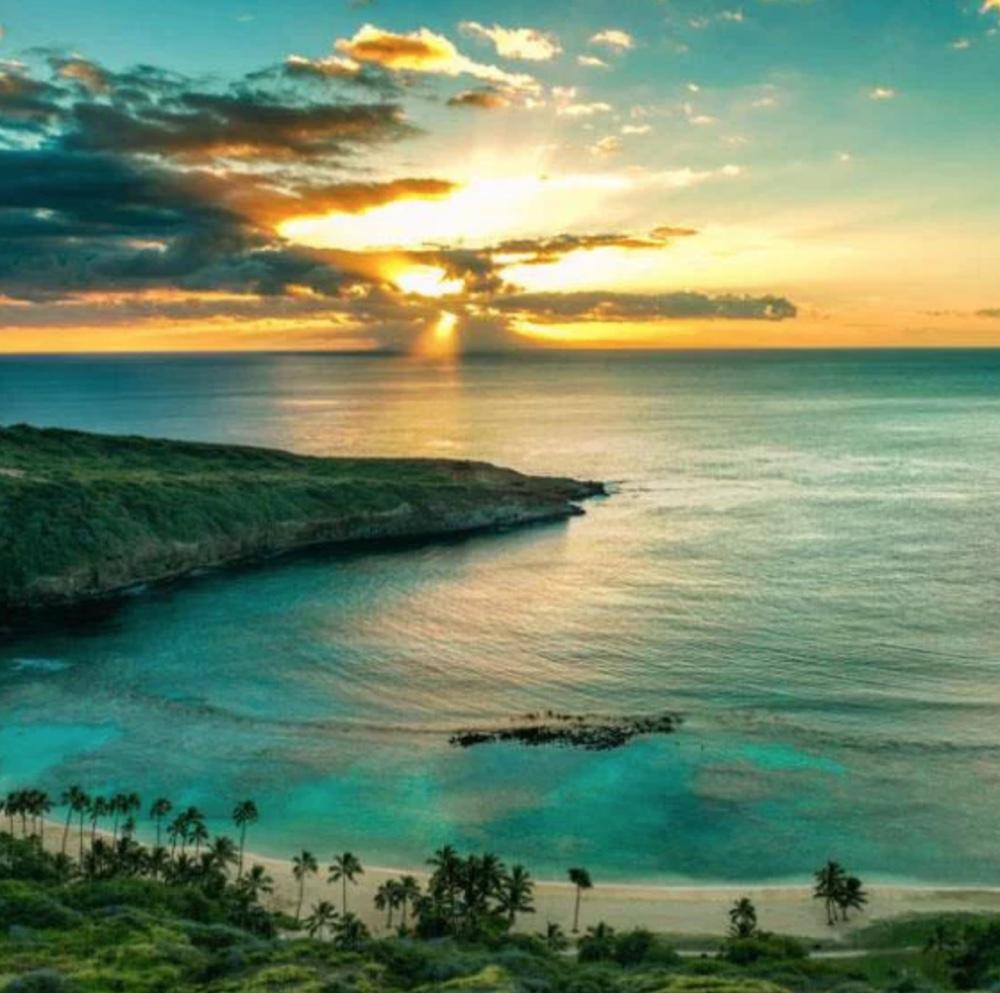 Regency on Beachwalk Waikiki by Outrigger Lotus