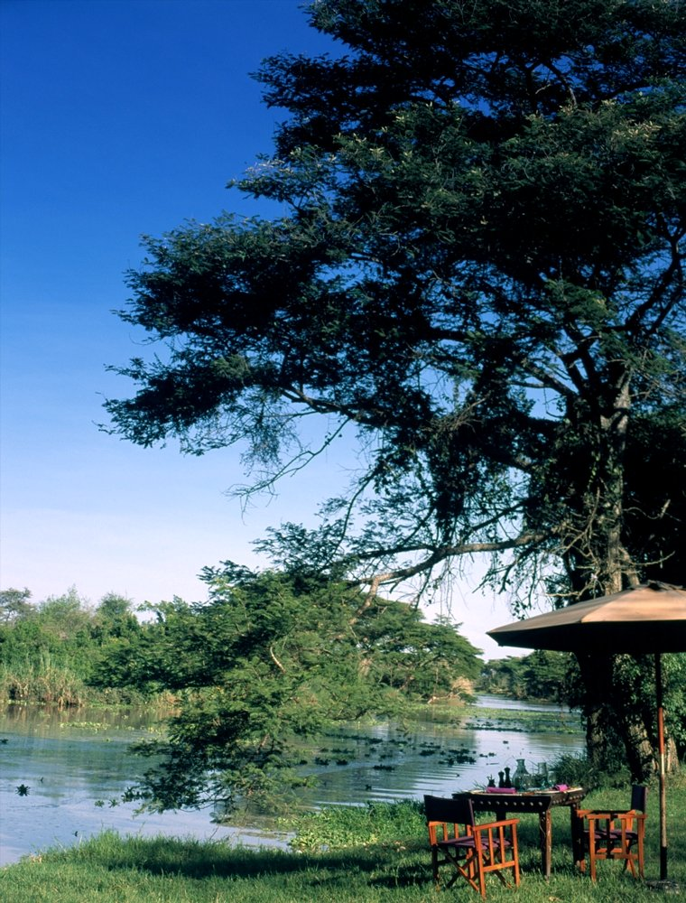 grumeti river camp  tanzania