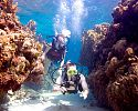 Scuba Diving is Included - Sandals Royal Caribbean