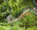 Winding stairways - Couples Sans Souci