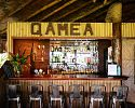 Qamea Bar - Qamea Resort and Spa