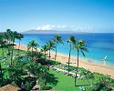Whale Watching - Royal Lahaina Resort