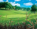 Golf - Sandals South Coast