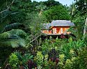 Treehouse - Matangi Private Island Resort