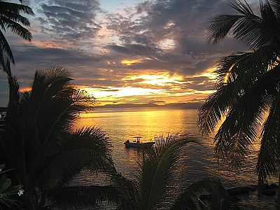 Taveuni Palms Resort